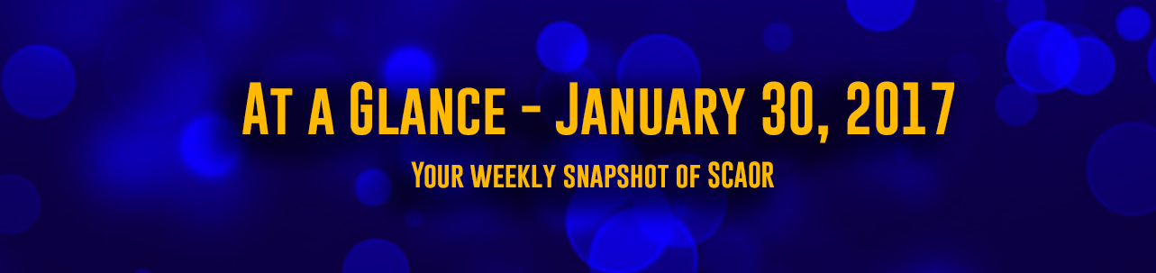 At a Glance - January 30, 2017