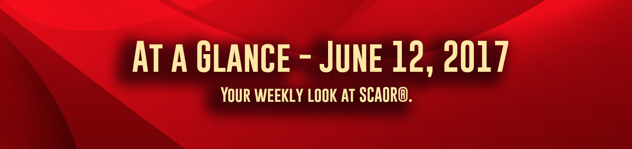 """At A Glance"" - For June 12th, 2017"